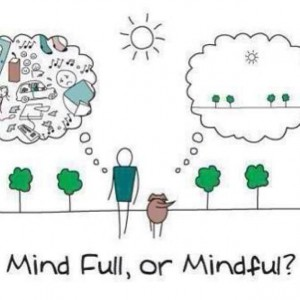 Mindfulness has been shown to calm the Central Nervous System and aid in impulsive behaviors. These resources show how easy it is to add Mindfulness into your life.